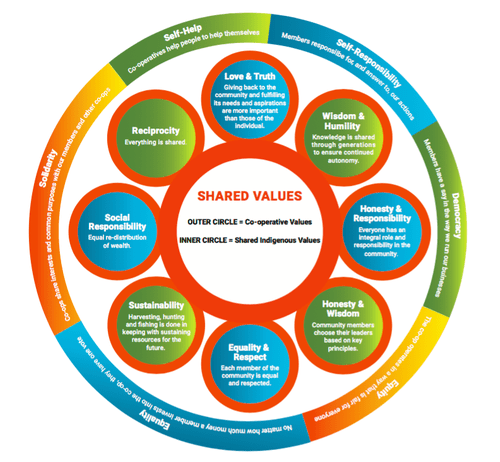 The Opportunities of Indigenous Co-op Development