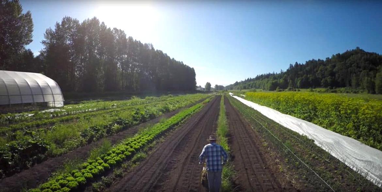 Glen Valley Organic Farm Co-op