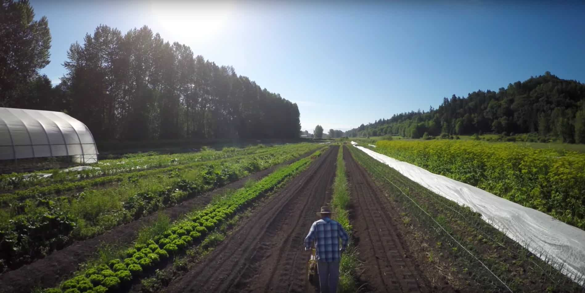 How co-ops can help farmers get started