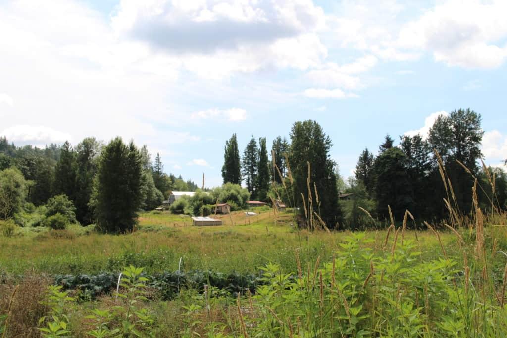 """The Farmland Belongs to the Community"": Glen Valley Organic Farm Co-op"